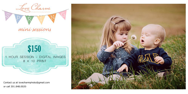 Promotion: Spring Mini Sessions!