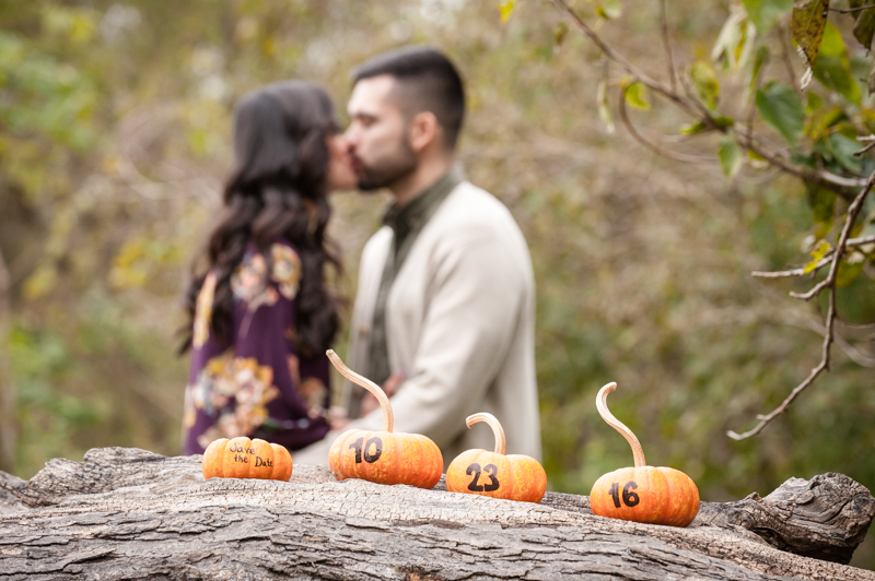 Victoria & Joey's Engagement-2015-10-18-SOMD-RCD-417
